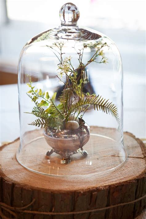 unique rustic terrarium wedding centerpieces deer