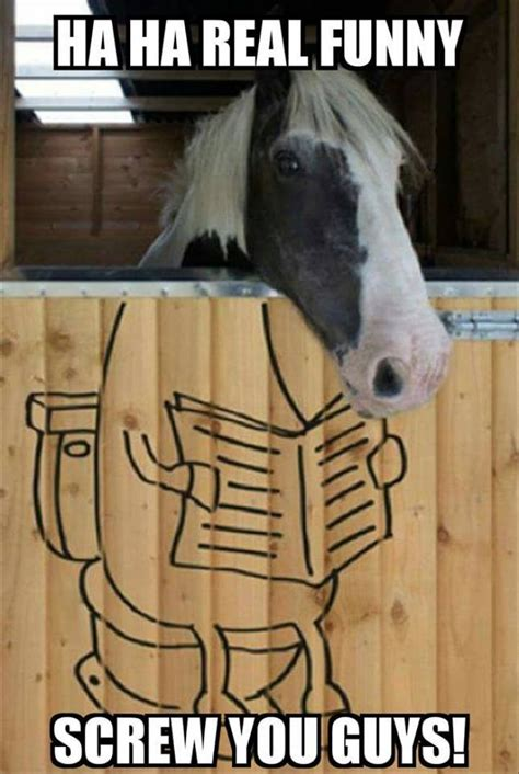 Real Funny Memes - horse humour page 5 forums at psych central