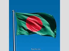 আইটি নেত্রকোনা BANGLADESHI NATIONAL Flag