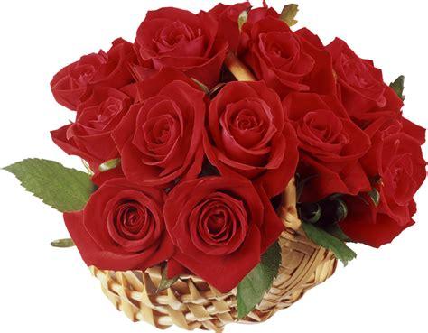 cerita bahasa inggris tentang bunga mawar anak