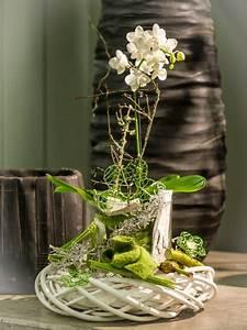 Orchideen Im Glas Dekorieren : ach ich mach mal einen auf fr hling orchidee ~ Watch28wear.com Haus und Dekorationen