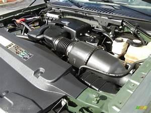 2004 Ford Expedition Eddie Bauer 5 4 Liter Sohc 16
