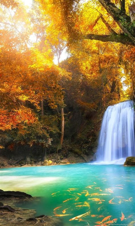 hd nature wallpaper   android