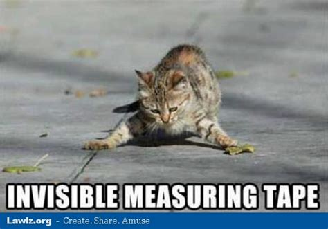 Tape Meme - invisible measuring tape cat meme cat planet cat planet