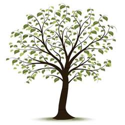 free tree of clipart clipart suggest