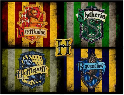 hogwarts house  harry potter   belong