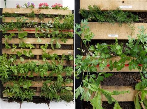 vertical pallet garden creates pallet vertical garden yourself diy furniture