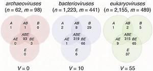 32 Bacteria And Virus Venn Diagram