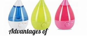 Cool Mist  Difference Between Cool Mist Humidifier And