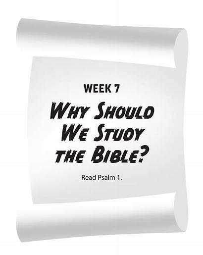 Bible Study Why Should Word Exploring God
