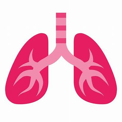 Lung Lungs Science Injuries Chromebook Pngimg