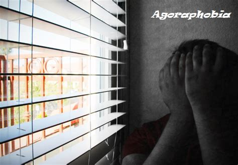 agoraphobia definition pronunciation  symptoms