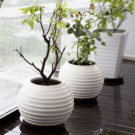 Large White Decorative Vases by Contemporary Floor Vase Ideas And Exles Founterior