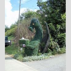 17 Best Images About Dragons, The Awe Of Topiary Art Xd