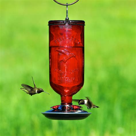 humming bird feeder pet 174 antique bottle glass hummingbird feeder model