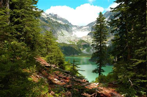 lake forest mountain washington state trees cliff