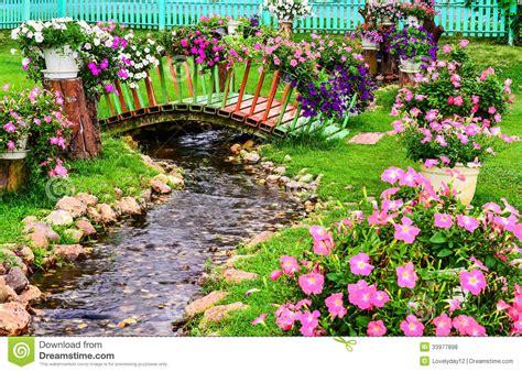 primavera in giardino fiori della primavera in giardino con uno stagno
