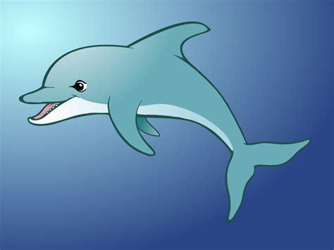 Cartoon Dolphin Related Keywords