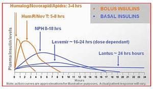 Basal Insulin Berechnen : basal insulin ~ Themetempest.com Abrechnung