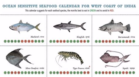 fish   almanac  sustainable seafood