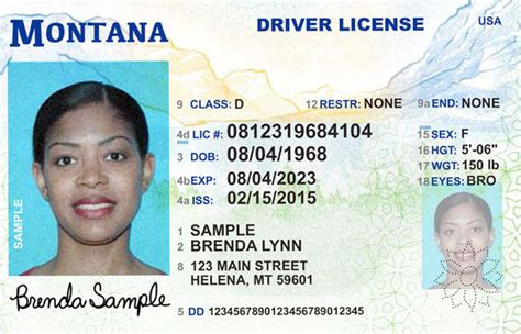 Montana New Driver's License Application And Renewal 2019