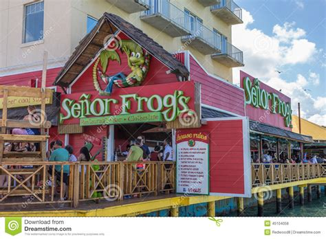 deck restaurant nassau bahamas frog in a hat on a deck chair with a glass royalty free