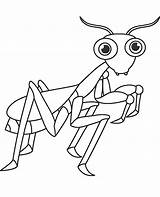 Coloring Pages Insect Insects Ant Bugs Colouring Grasshopper Learny Topcoloringpages Whitesbelfast sketch template