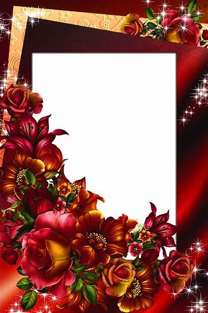 Frame Roses Flowers Frames Rose Clipart Yopriceville