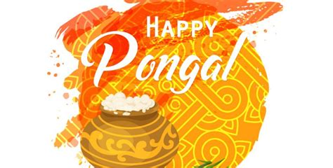 thai pongal celebrated
