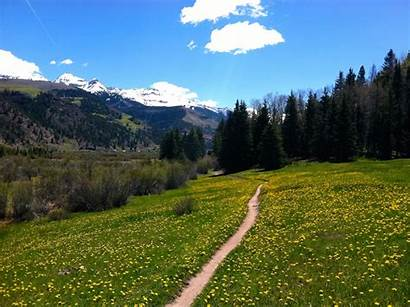 Valley Trail Floor Telluride Winn