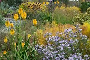 Graminées Vivaces Hautes : plantes jardin sec tout ~ Premium-room.com Idées de Décoration