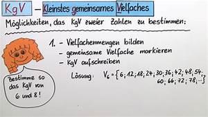 Kleinstes Gemeinsames Vielfaches Berechnen : kleinstes gemeinsames vielfaches kgv einf hrung mathematik online lernen ~ Themetempest.com Abrechnung