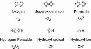 2 Electron Structures Of Common Reactive Oxygen Species