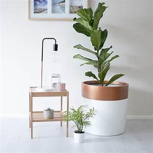 grand pot pour plante homeezy With chambre bébé design avec pot de fleur plastique gifi