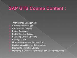 Sap Gts Online Training Course In Usa