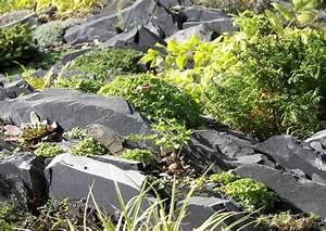 Steingarten Bilder Beispiele : felsspaltengarten schichtgestein im steingarten ~ Watch28wear.com Haus und Dekorationen