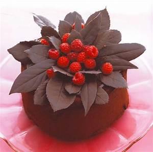 Décorer Un Gateau Au Chocolat : trucs et astuces nos recettes dr oetker ~ Melissatoandfro.com Idées de Décoration