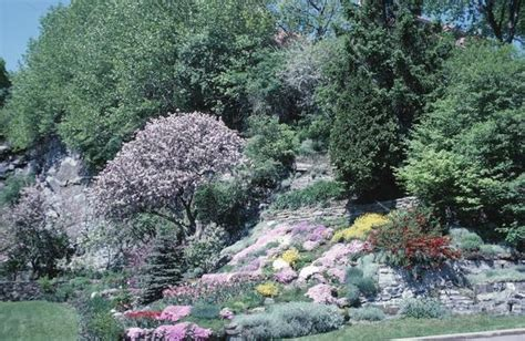 what to plant on a hillside to erosion 23 best images about hillside landscaping ideas on pinterest gardens english cottage gardens