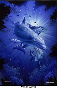 Schöne Delfin Bilder : gbpics delfin blau wasserbild bilder tiere wasser bilder und wasser ~ Frokenaadalensverden.com Haus und Dekorationen