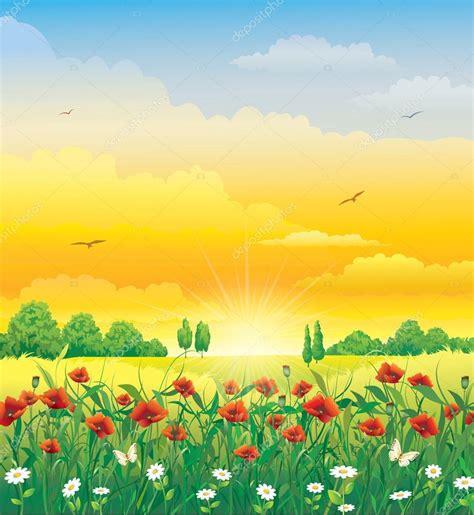 immagini prato fiorito prato fiorito con i papaveri vettoriali stock 169 seriga