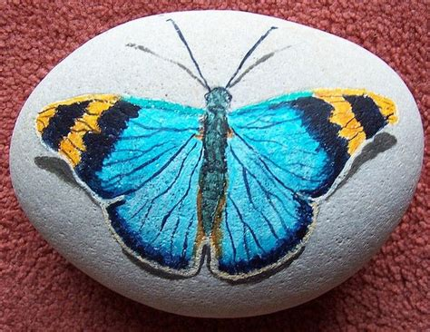 Butterfly And Stones by Butterfly Painting On Butterfly Painting