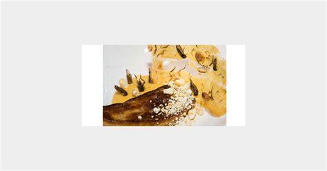 cuisiner les insectes cuisiner les insectes 56 images manger des chenilles