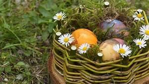 Eier Färben Mit Naturmaterialien : osternest selber basteln mit moos ~ Frokenaadalensverden.com Haus und Dekorationen