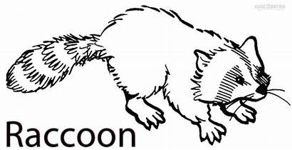 Raccoon Coloring Pages Printable Cool2bkids Everfreecoloring