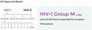 Living With Hiv And Other Lgbtq Issues    Hiv Strains And