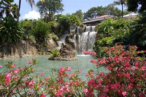 panoramio photo of guadeloupe quot jardin botanique de deshaies quot