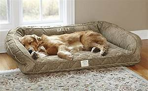 deep dish dog bed for senior dogs webnuggetzcom With best dog beds for senior dogs