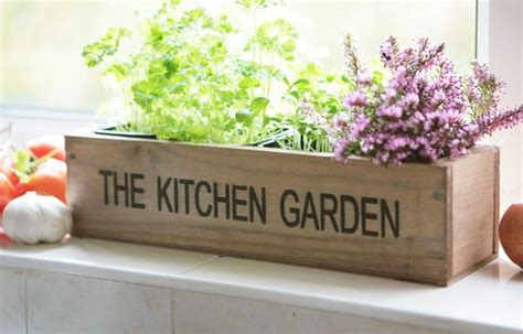 kitchen herb wooden planter window box garden indoor plant