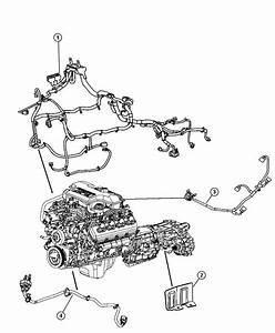 Chrysler Aspen Wiring  Jumper  Multiple Displacement