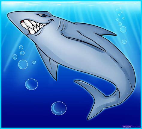 draw  cartoon shark step  step cartoon animals